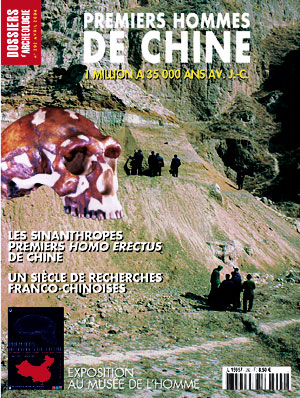 Dossiers d'Archéologie n° 292 - Avril 2004